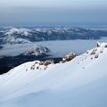 2010-02-15 - 09 - Black Butte   Casaval Ridge