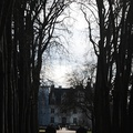 2009-01-18 - 016 - Chenonceau - Approach